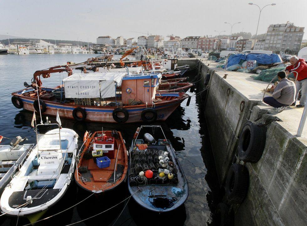 La cofradía asegura que, desde hace algún tiempo, la Guardia Civil está más presente en el puerto.