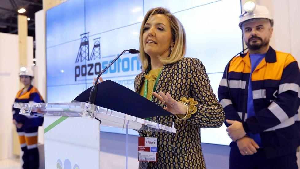 Aldeas y apartamentos rurales en Asturias.Teresa Mallada, durante su etapa como presidenta de Hunosa, en la presentación de las visitas guiadas al Sotón, en Fitur