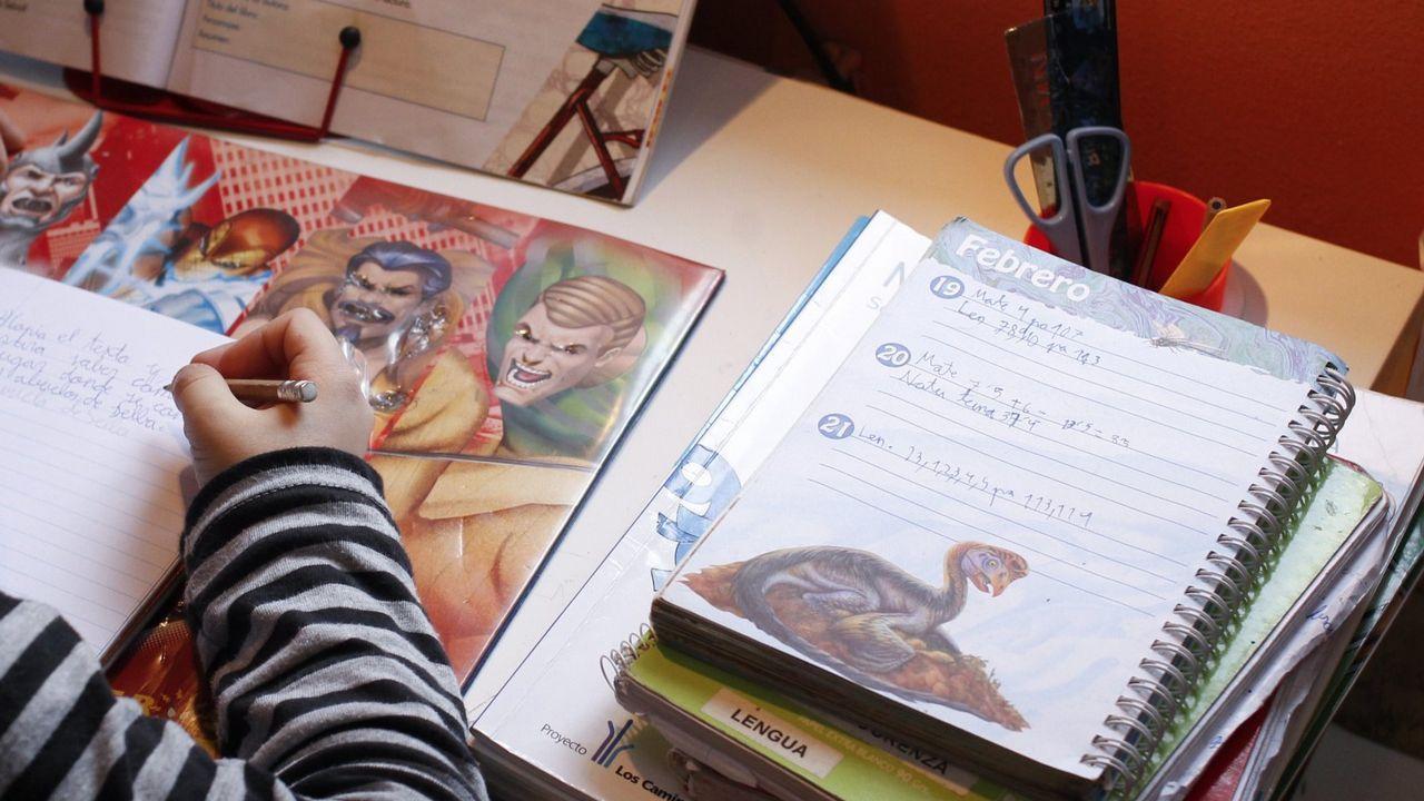 Niños de un colegio de Murcia gritan en gallego: «Unidos, moi fortes».Imagen de archivo de un niño haciendo deberes
