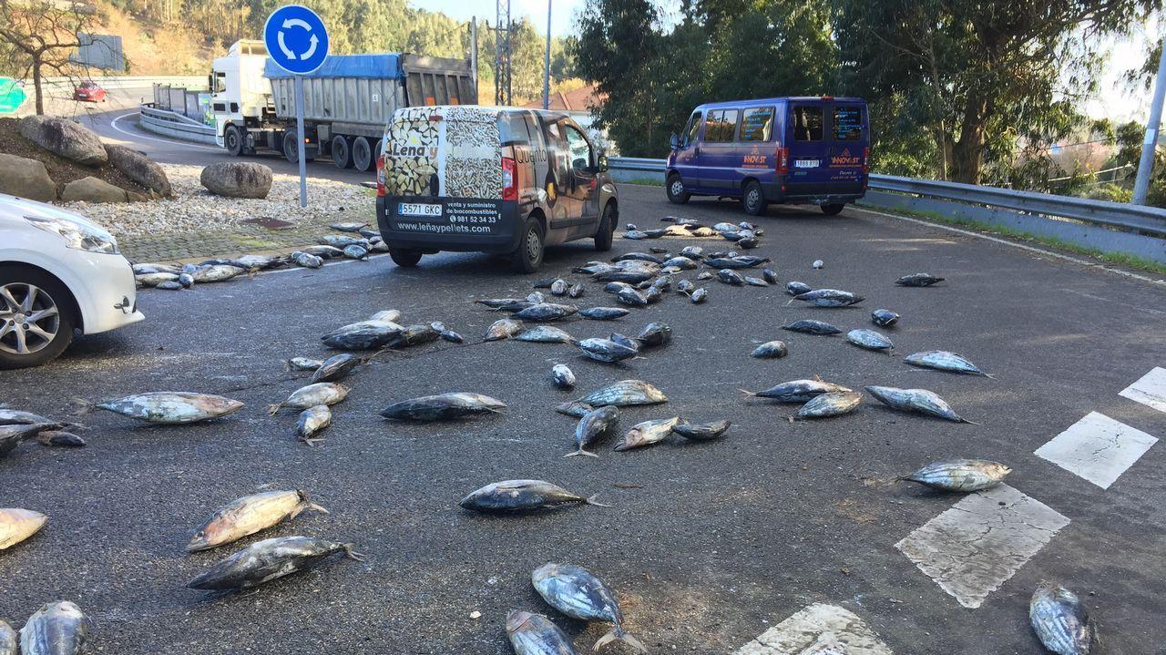 Un camión cargado de túnidos pierde parte de su carga en Carril