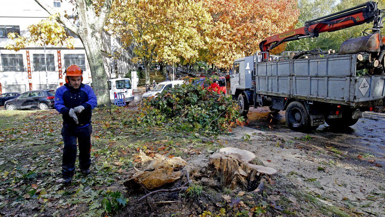 El temporal deja un reguero de incidencias en Santiago y comarcas.La ministra de Trabajo, Magdalena Valerio, esta mañana en Santiago