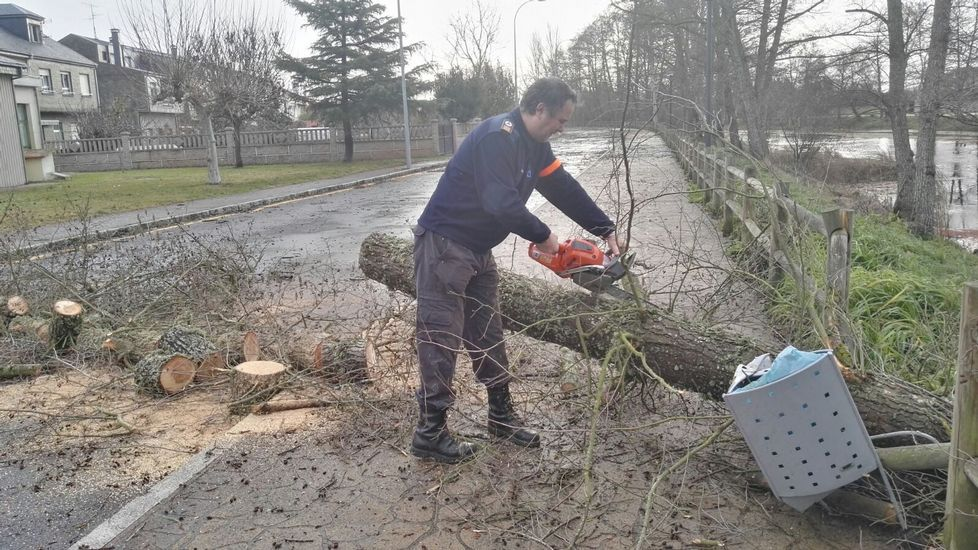 En la zona de O Toural, en Xinzo, fue necesario retirar árboles