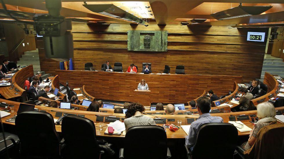 El presidente del Principado, Javier Fernández, interviene desde su escaño en el pleno de la Junta General.Estefanía Torres