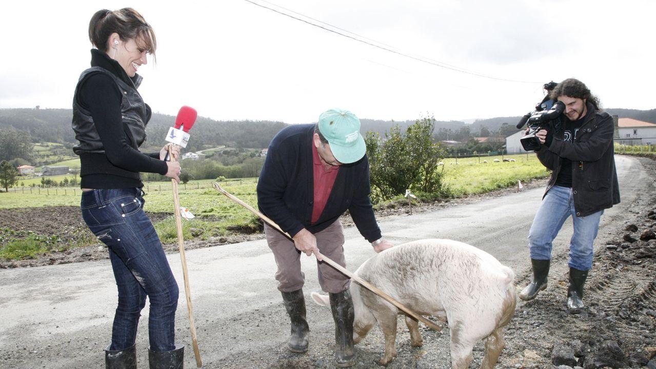 El gorrino se convirtió en el 2008 en el protagonista de cientos de noticias, de una campaña ecologista para salvarlo, e incluso salió en uno de los informativos nacionales con más audiencia.