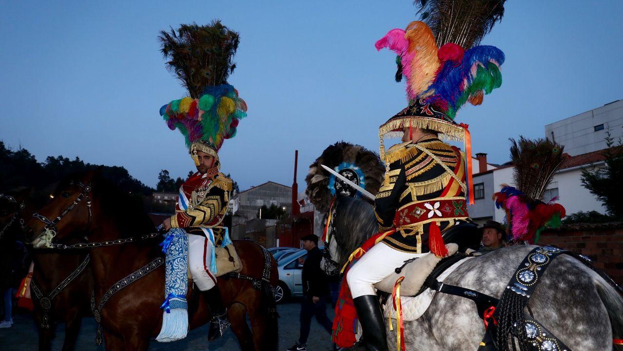 Exposición de la camelia en Vilanova