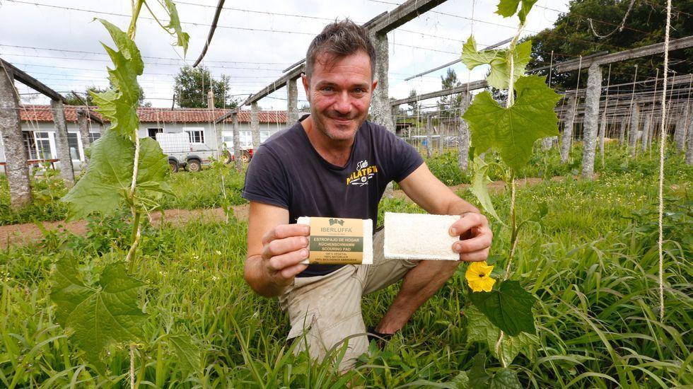 Aceite de oliva.Roberto Suárez en Corea del Sur