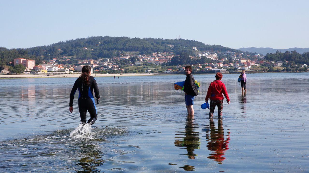 Al rescate de un arroaz en Pontevedra.