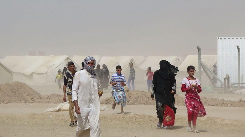 .Refugiados iraquís en un campamento habilitado para acoger a los vecinos de la localidad de Faluya que huyen de losa combates entre las tropas regulares y los soldados del Estado Islámico.