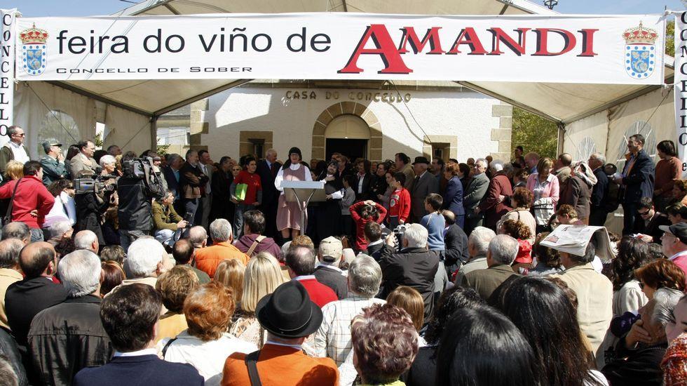 Un recorrido visual por las tierras de Amandi.O nome da parroquia soberina nun cartel anunciador da Feira do Viño de Amandi, na edición do 2009