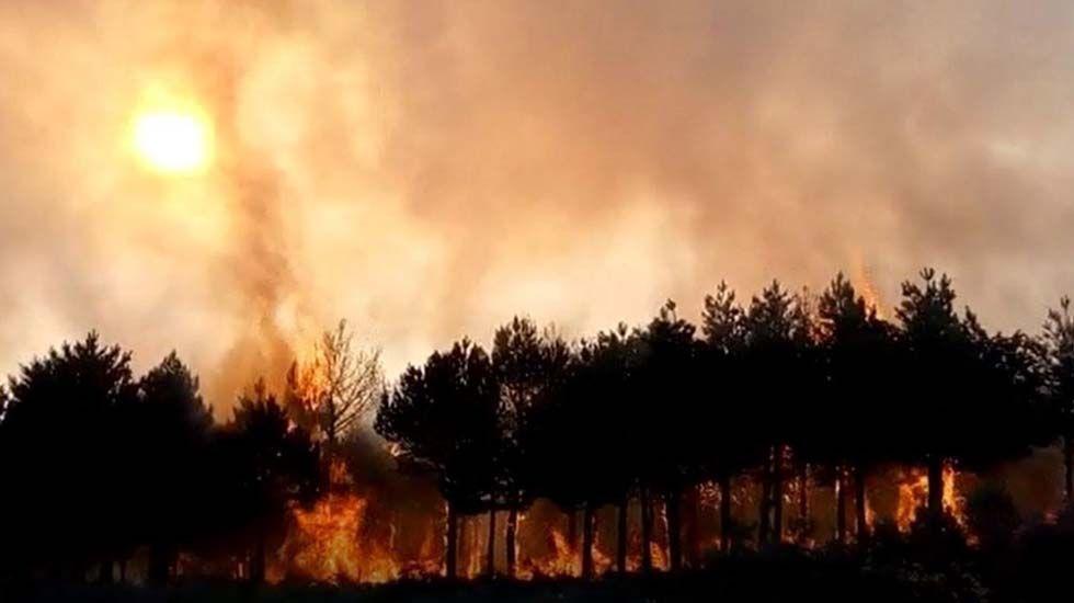 Olivier Onidi y Belén Fernández en Bruselas.Incendio en un bosque asturiano
