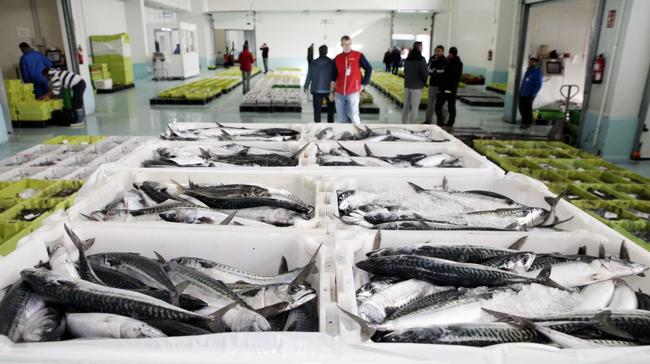 .El cupo adicional permitirá alargar la duración de una de las pesquerías más rentables