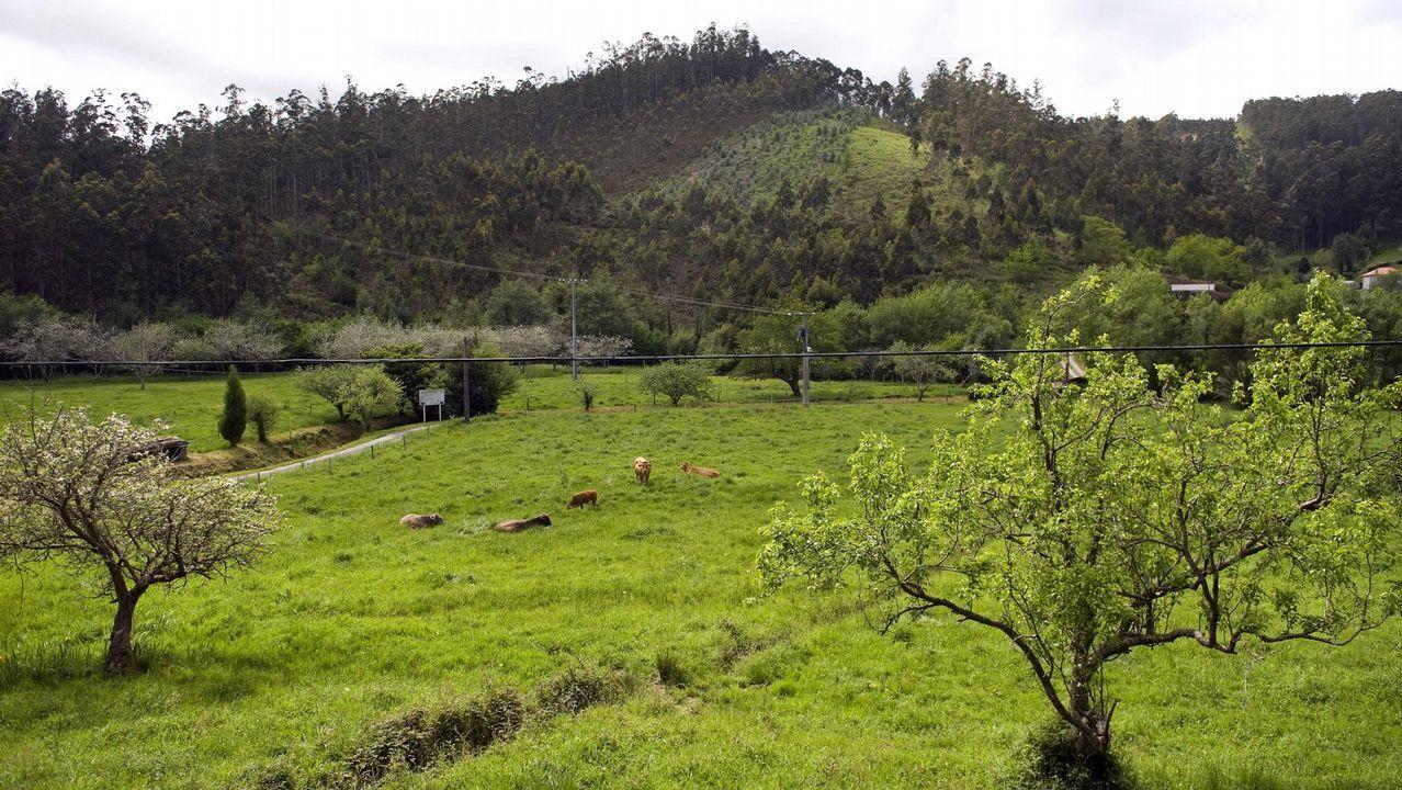 Así fue el rescate de las dos niñas atrapadas en unas rocas en Sanxenxo.Vista de la parroquia de Couzadoiro