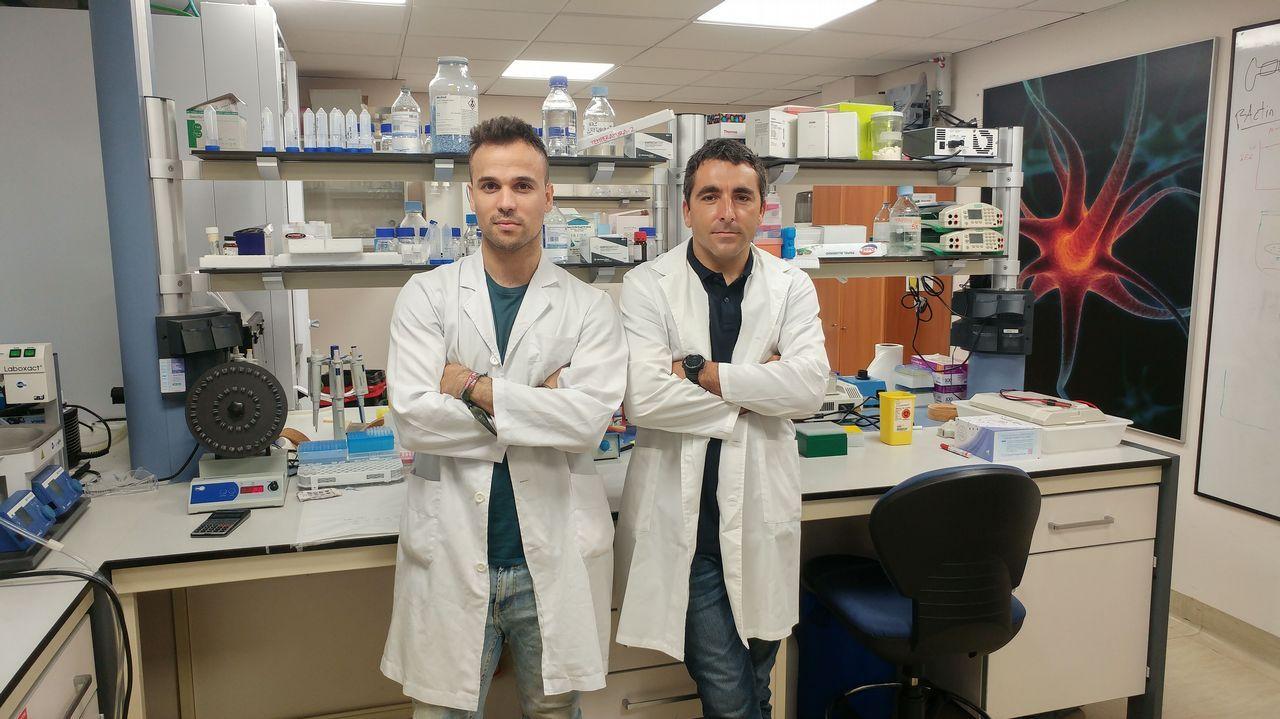Otro 'milagro' de la medicina: el hígado que salvó dos vidas.A la izquierda, el mosquito asiático, y a la derecha, el mosquito tigre