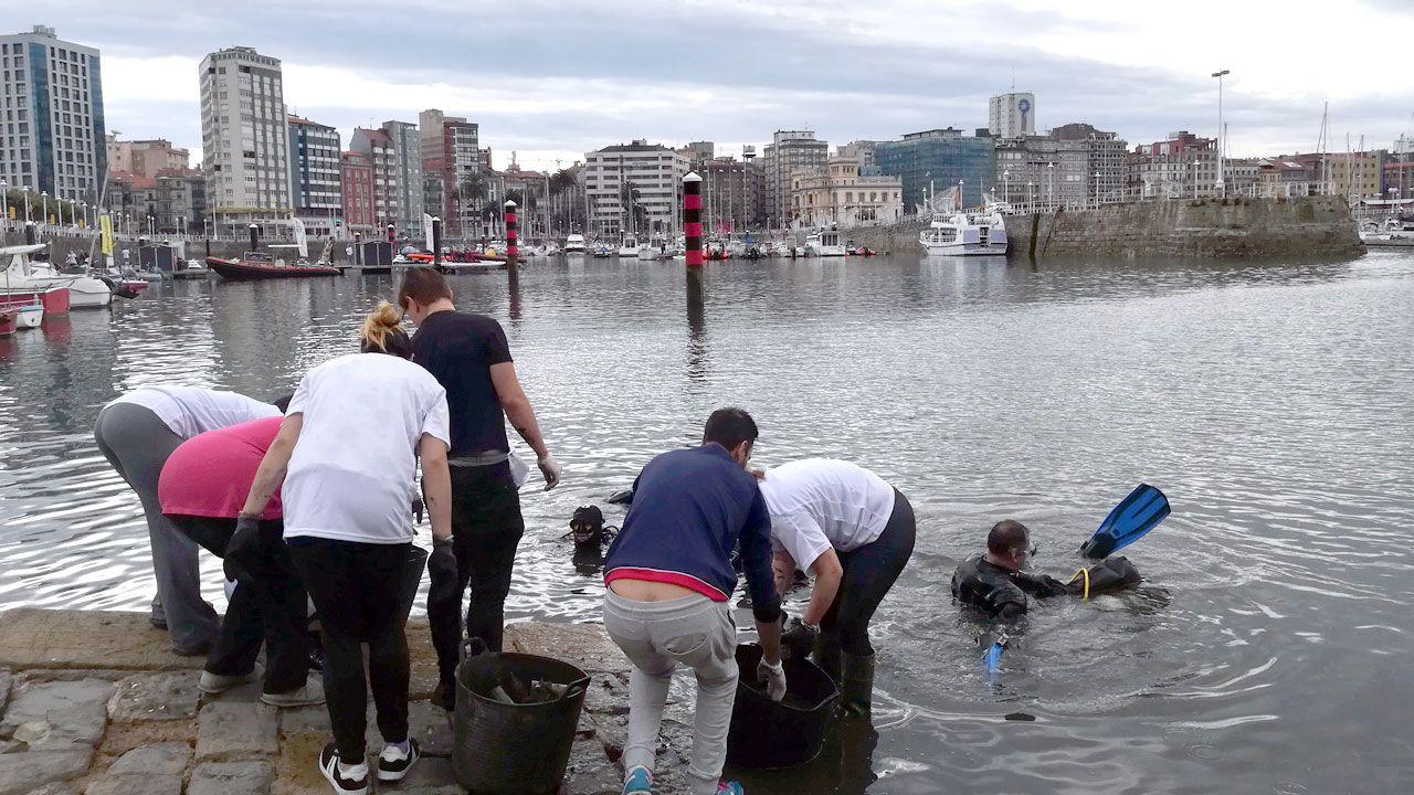 Un esfuerzo ciudadano para limpiar el Puerto Deportivo