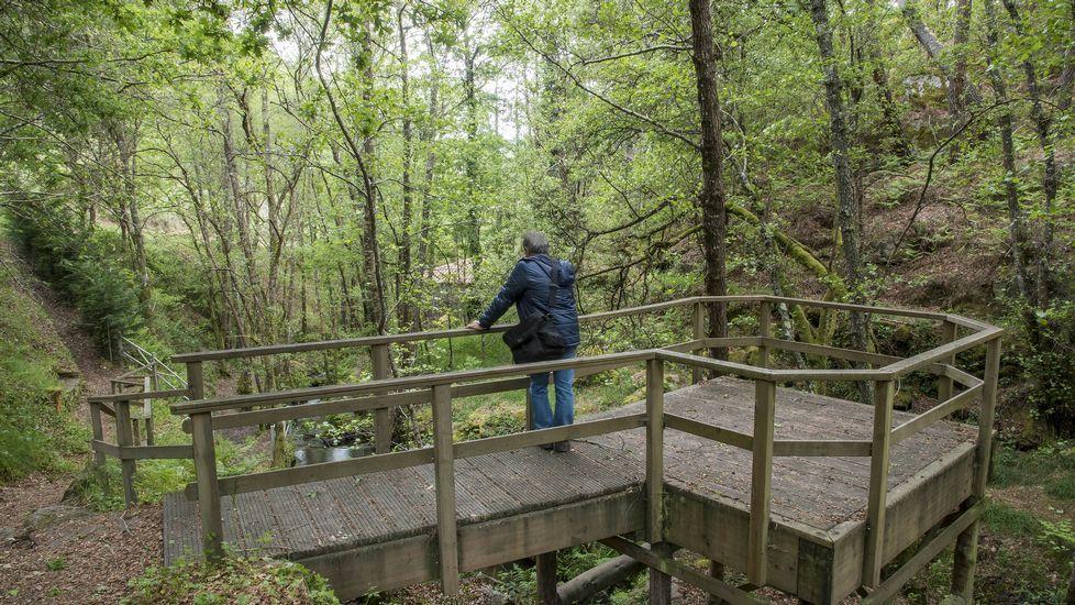 Un mirador sobre el arroyo en la parte central del recorrido