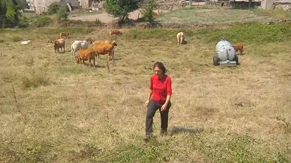 ¡Ellos se llevan el meco!.Los ganaderos protagonizaron varias tractoradas pidiendo ayudas directas