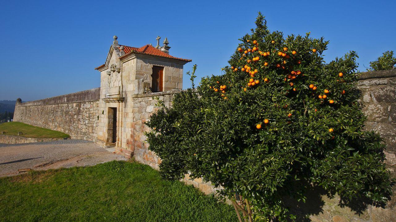 Castillo de Salvaterra de Miño.