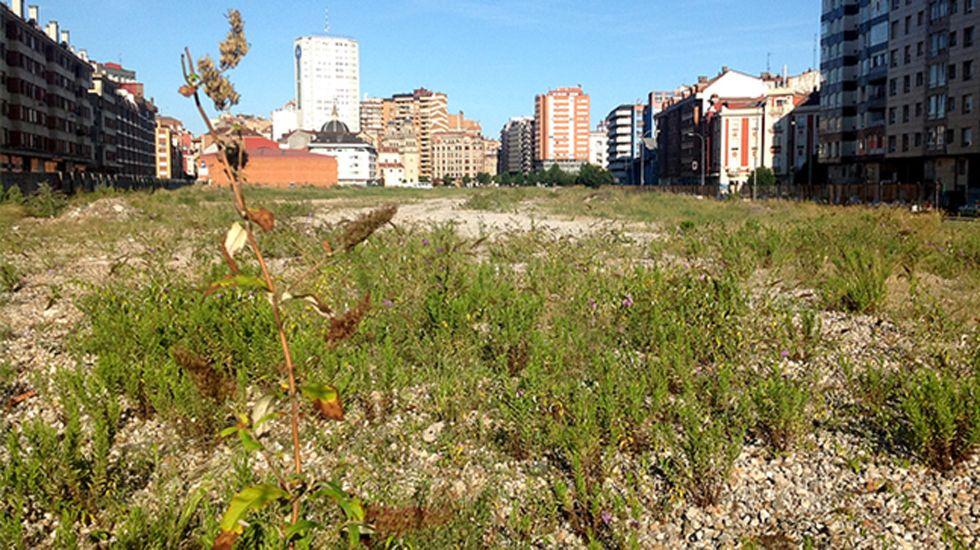Felipe VI inicia, con Patxi López, una nueva ronda de consultas.Los terrenos de la antigua playa de vías de Gijón antes de su ajardinamiento