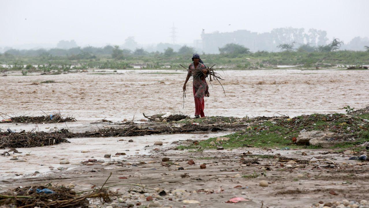 Una joven india recolecta leña en un área inundada tras la subida del nivel del agua durante las fuertes lluvias monzónicas