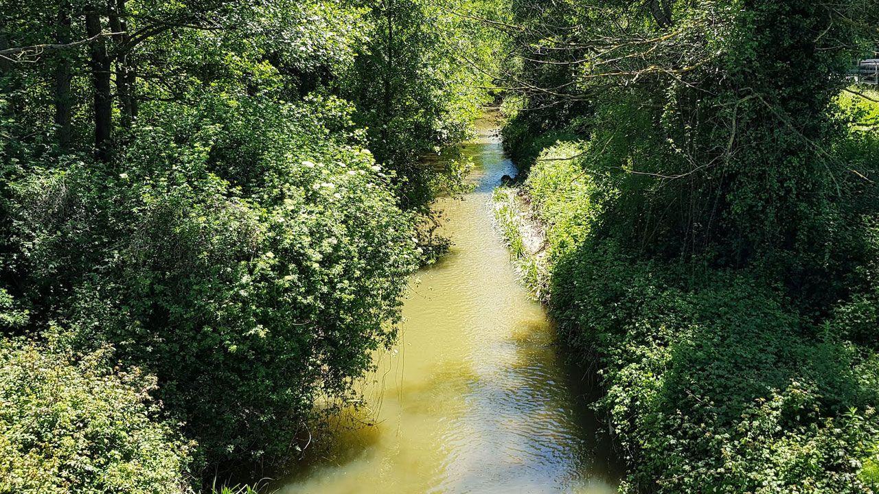 Río Pinzales