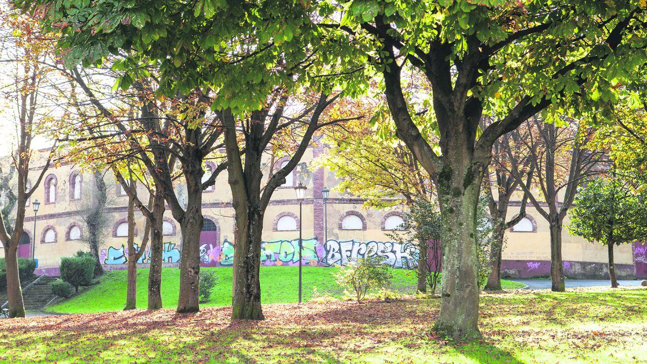 Latexos repasa el arte gallego desde finales del XIX.Plaza de Toros de Oviedo