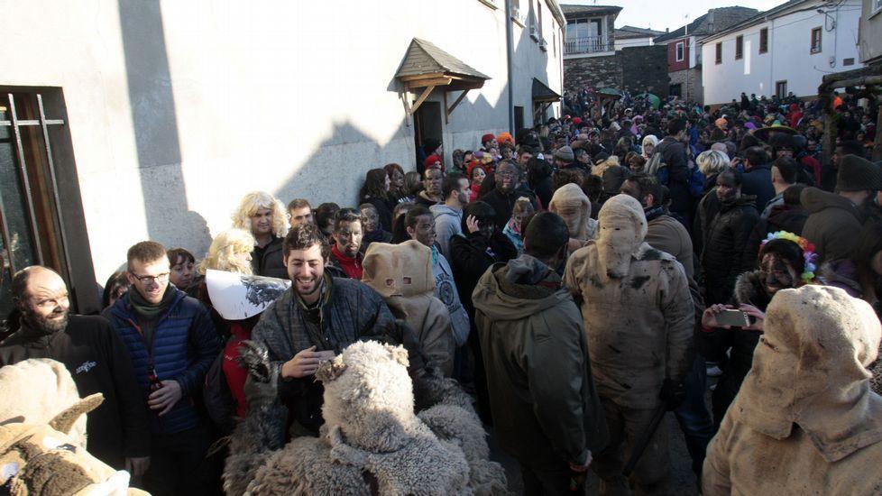 Centos de persoas agardaban ás cinco da tarde a saída do Oso en Salcedo