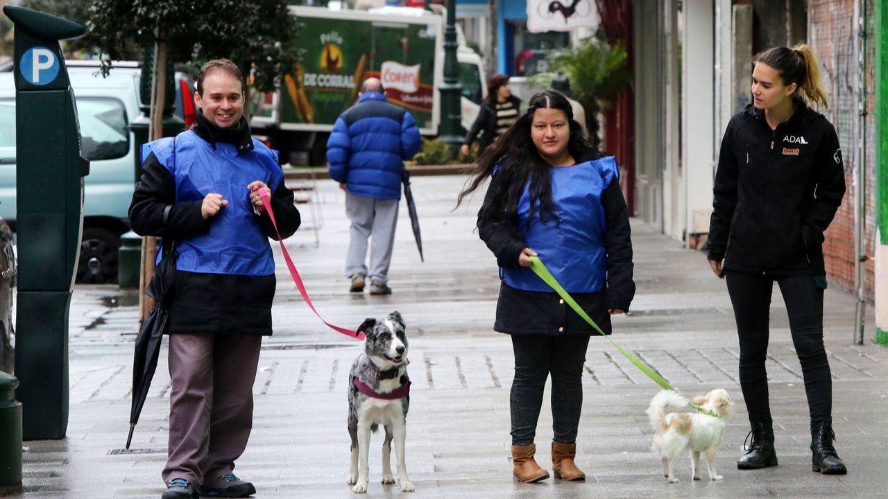 Todas las imágenes de la Semana da Mobilidade en Carballo.FOA organiza una actividad para limpiar la senda del oso