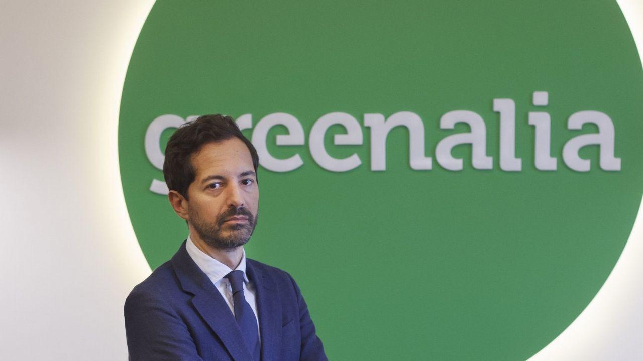 GREENALIA.Obras para la planta de biomasa de Greenalia en Teixeiro-Curtis