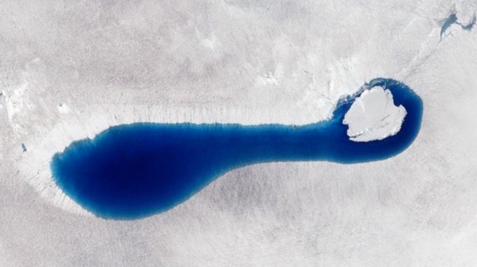 El deshielo ha generado casi 8.000 lagos en la superficie de la Antártida.Pequeño crustaceo marino, krill, que habita en las aguas de la Antartida