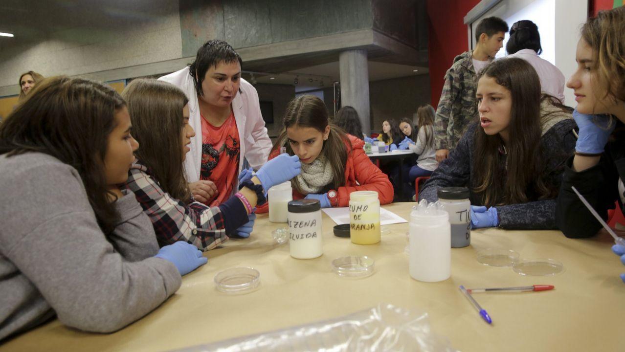 Científicos investigando la presencia de la velutina en una colmena