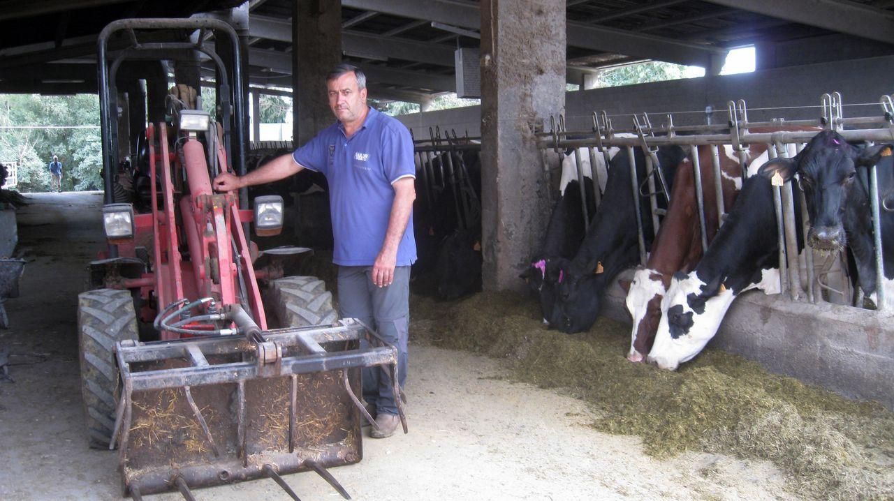 «Estou aquí porque elixín isto». José Ángel Blanco Purriños es presidente de Os Irmandiños pero también ganadero. Su explotación, situada en Xermade, tiene 140 vacas en ordeño y 280 en total y cuenta con tres empleados. «Estou aquí porque elixín isto», dice.