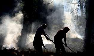 Un trabajador de la Brif contempla el frente de llamas del incendio forestal de Ibias.Quema controlada de rastrojos