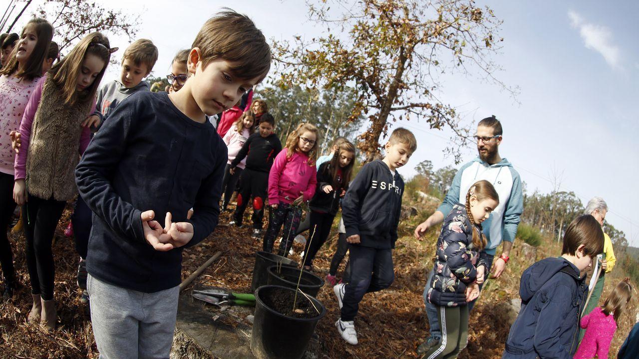 ¡Mira aquí las imágenes de la plantación de árboles de Voz Natura del colegio de Cespón!