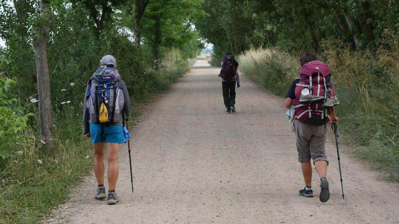 .Peregrinos, a la salida de Mansilla de las Mulas