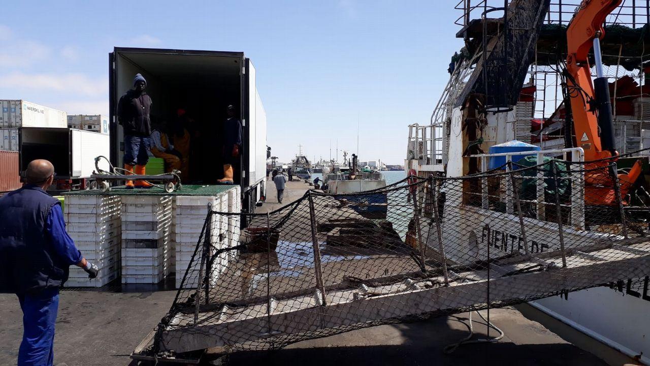 Un barco en una imagen de archivo carga madera de eucalipto en el puerto de Burela