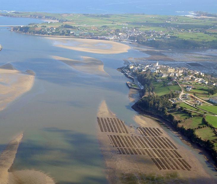 Imagen aérea de los parques de cultivos de ostras de la ría de Ribadeo, en el lado de Castropol.