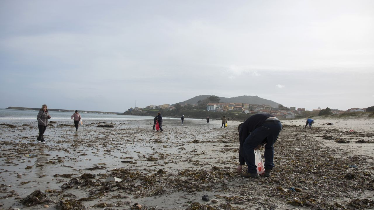El mar regaló a los vecinos de Fisterra decenas de almejas o vieiras y estos aceptaron encantados el obsequio