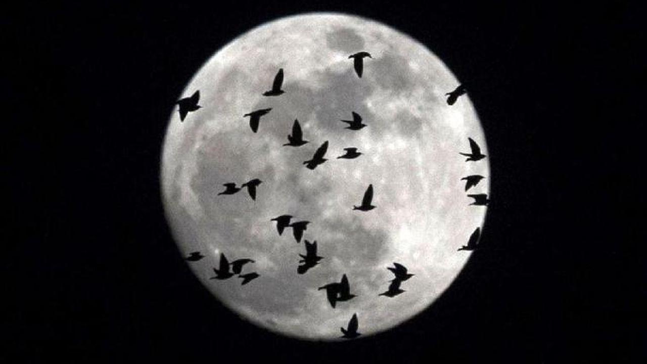 Desmontando los mitos de la Luna
