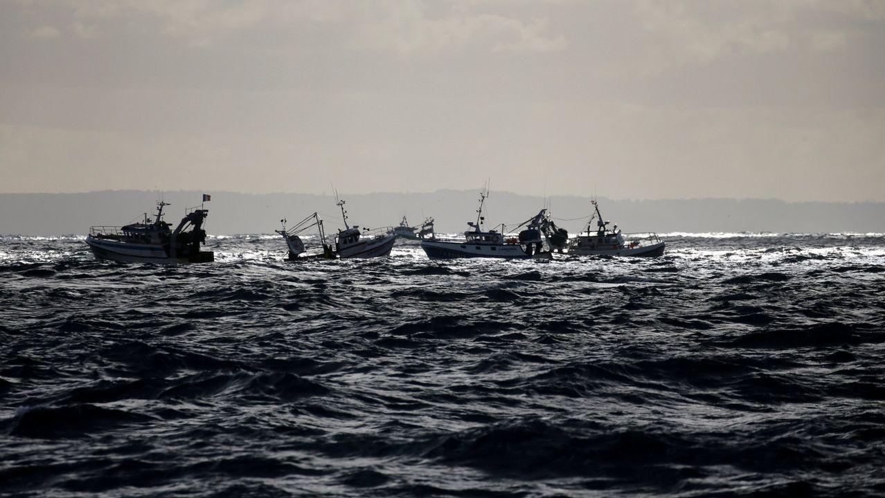 79 detenidos por traficar con atún rojo ilegal.La consejera de Desarrollo Rural y Recursos Naturales, María Jesús Álvarez, durante la reunión con representantes de las cofradías de pescadores en la Feria del Campo y de las Industrias Agrícola, Ganadera, Forestal y Pesquera