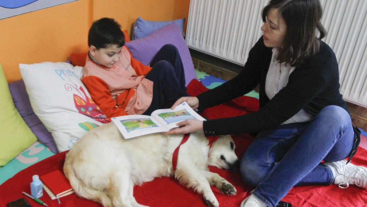 Nora, la perra que enseña a leer.