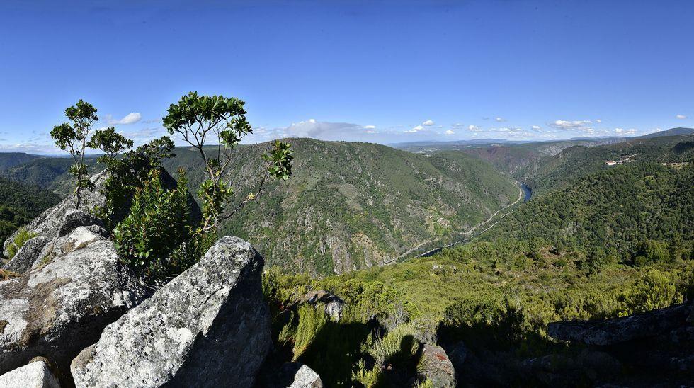 Ruta de senderismo de Moura (Nogueira de Ramuín). Las vistas del cañón del Sil desde lo alto del castro de Moura son espectaculares. Al fondo, Pena Pombeira, en el municipio de Pantón. A la derecha, el parador de turismo de Santo Estevo