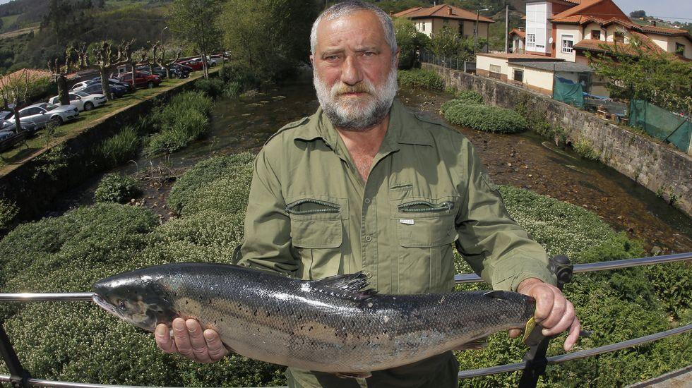 Centro de menores Los Pilares, en Oviedo.Alejandro Pérez , un experimentado pescador de Trelles (Coaña), con el  campanu  2017, un salmón de 5,790 kilos y 79 centímetros que ha caputarado en el río EO y por el que el restaurante  As de Picas  de Gijón ha pagado un total de 9.500 euros.