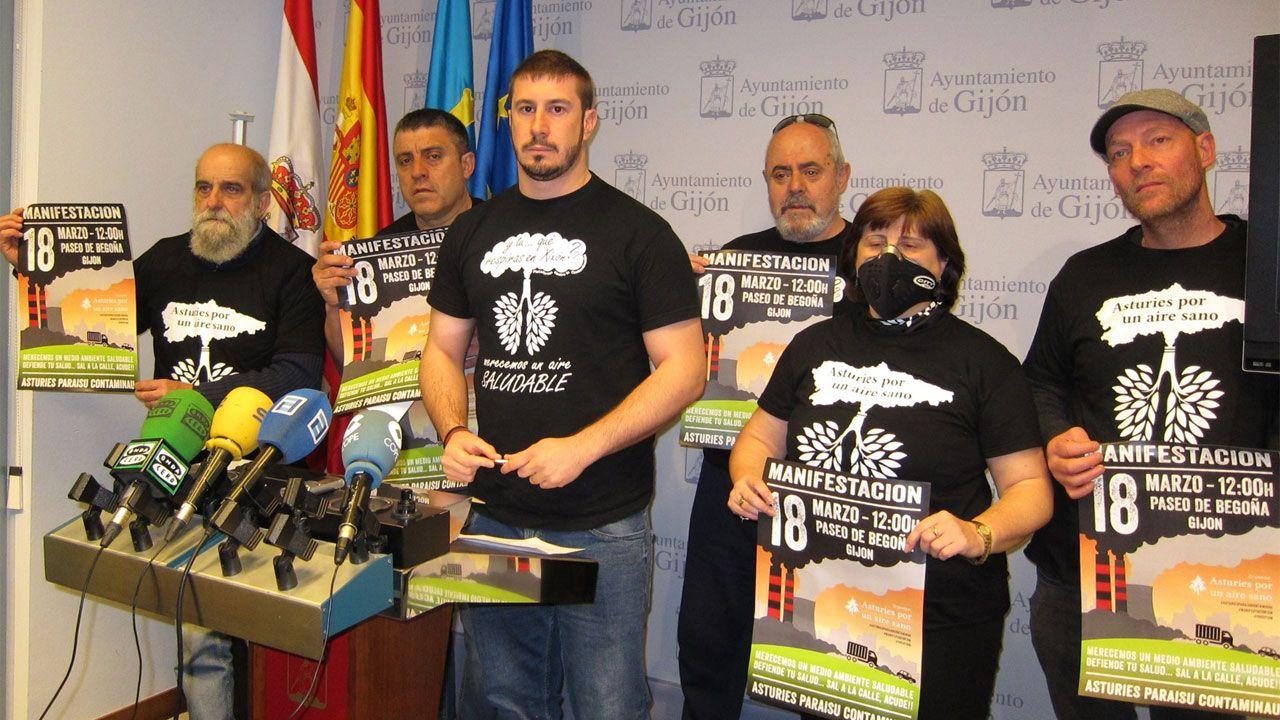 .Adrián Arias, en el centro, rodeado de miembros de la Plataforma Anticontaminación, en el Ayuntamiento de Gijón