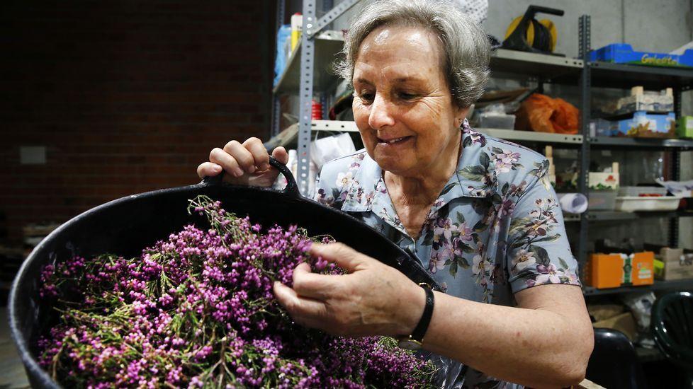 Sesenta años haciendo arte con flores por Corpus.Javier Losada, ante su retrato, obra de Jano Muñoz, en la galería de retratos de alcaldes e ilustres en María Pita