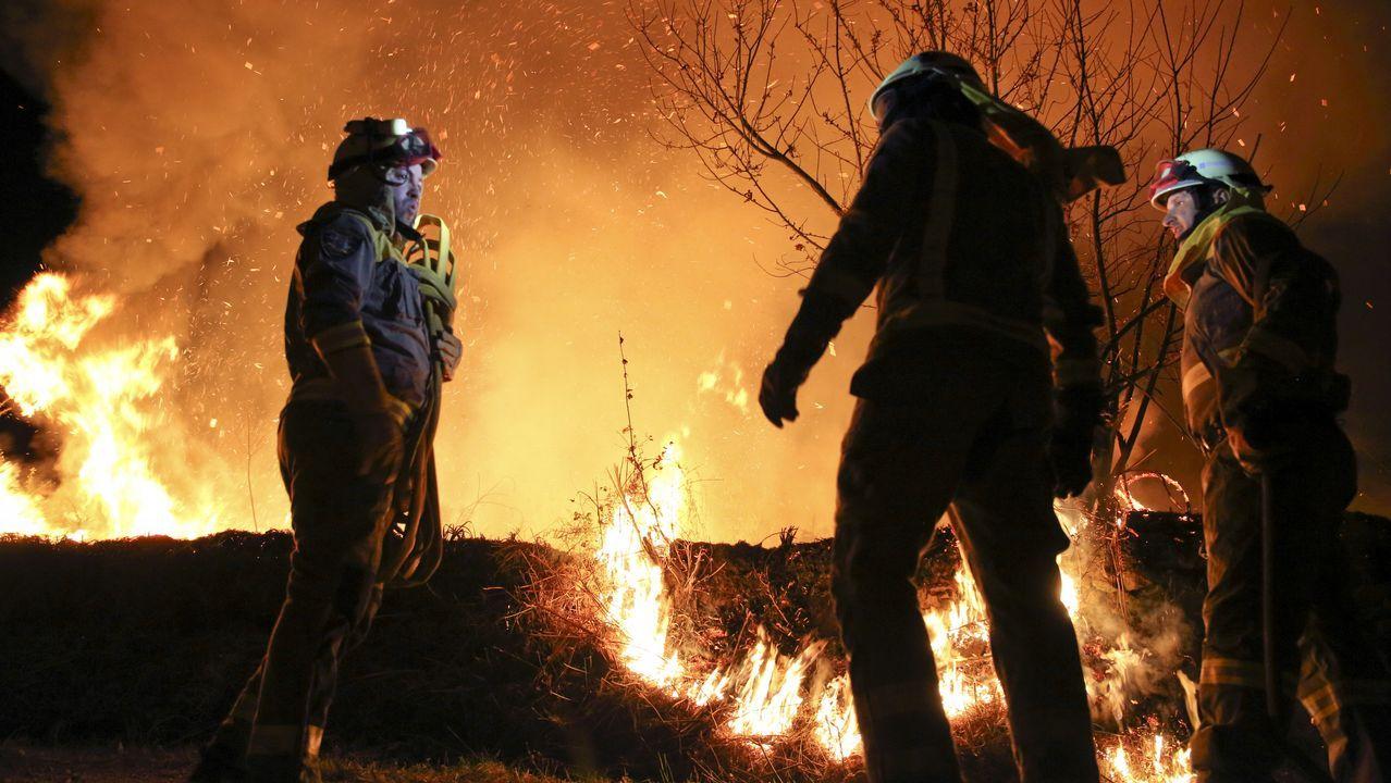 Los niños de Rianxo reivindican un futuro sin incendios, ¡mira las fotos!.Zona de Rianxo devastada por el fuego, en el día después