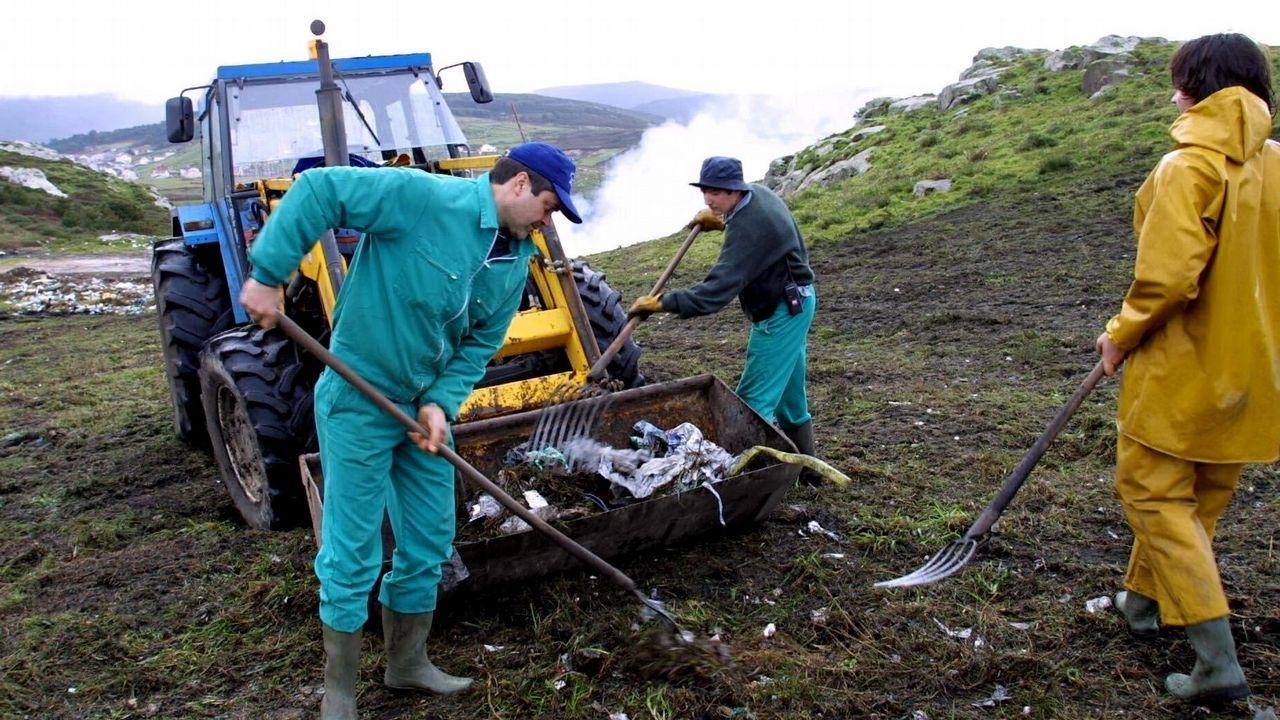 Buscan dos criaderos clandestinos de serpientes pitón en Lugo.Los restos de uralita hallados en unos terrenos en Ceares