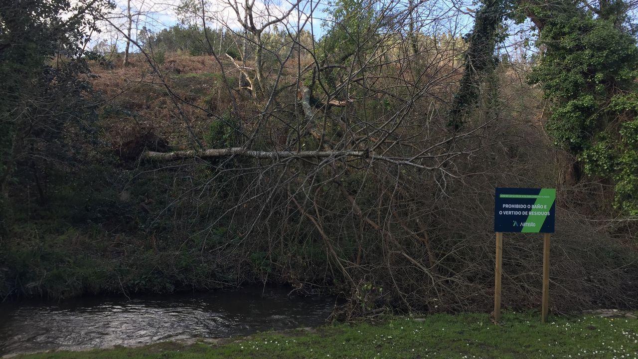 Daños causados por los temporales en la senda de Sisalde