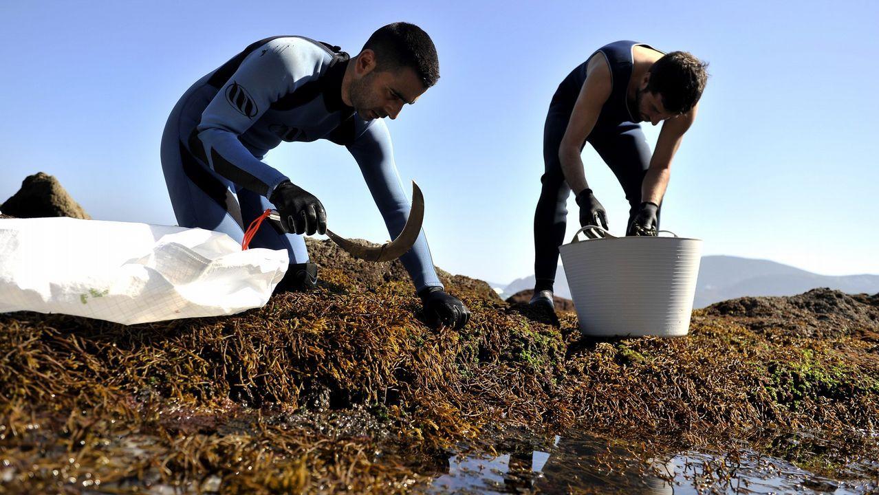 Midiendo el cambio climático en el Lago Enol