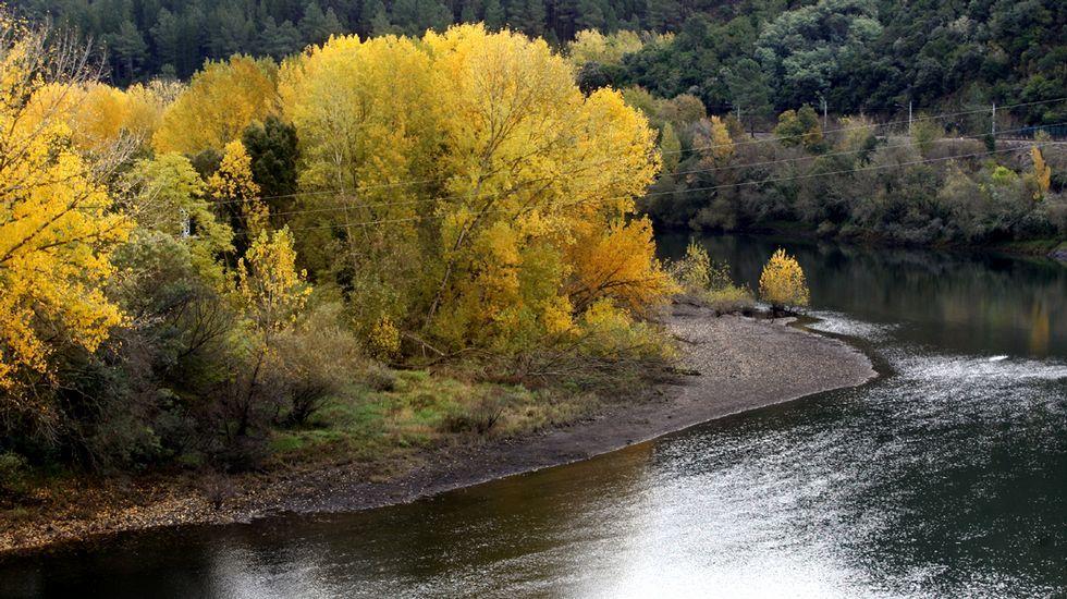 Un paseo visual por las minas de Rego de Chao.Ruta didáctica ambiental por el Macizo Central de la provincia de Ourense