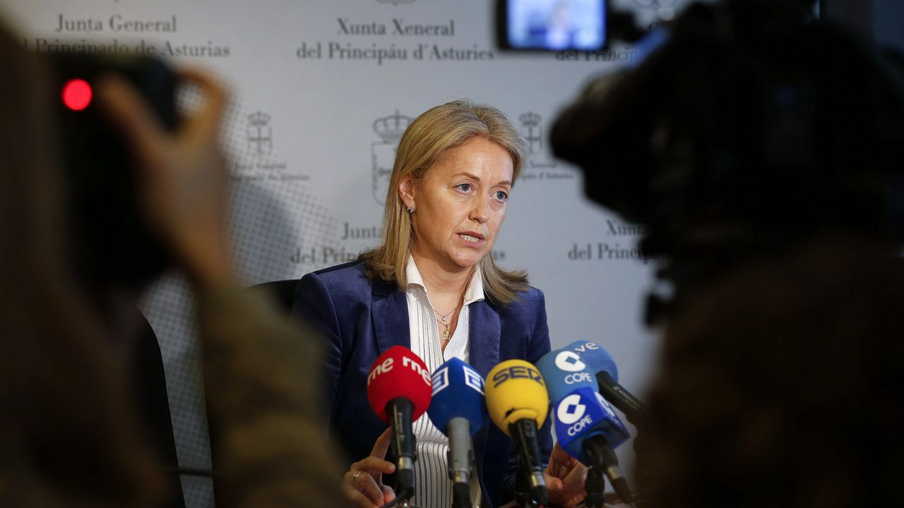 La presidenta y portavoz de Foro en la Junta General, Cristina Coto, ha acusado hoy al secretario general de su partido, Francisco Álvarez-Cascos, de estar detrás de una operación política que ha provocado una crisis política en su seno.
